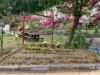 사진:경기도 지원사업 '원예활동프로그램 ' 꽃심기